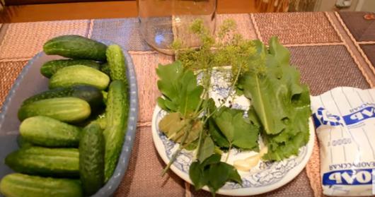 Как солить огурцы в домашних условиях на зиму: рецепты
