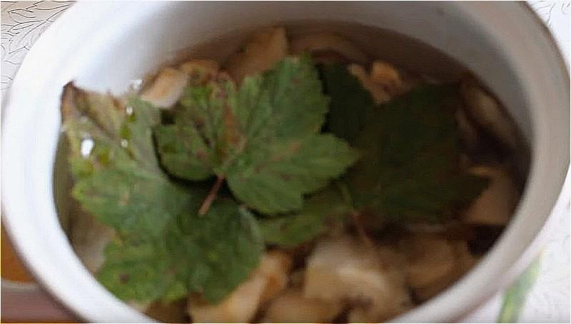 заливаем грузди водой, добавляем соль, листья смородины и варим