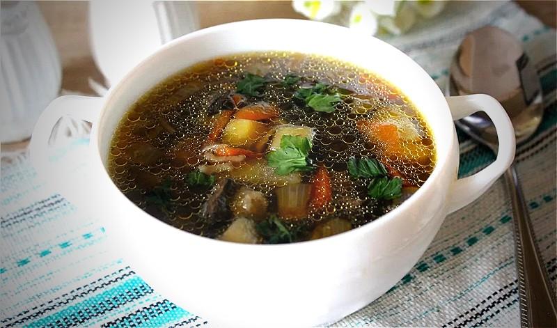 Грибной суп из свежих грибов - самые вкусные рецепты