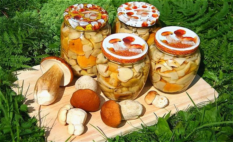 как мариновать белые грибы - простые и вкусные рецепты