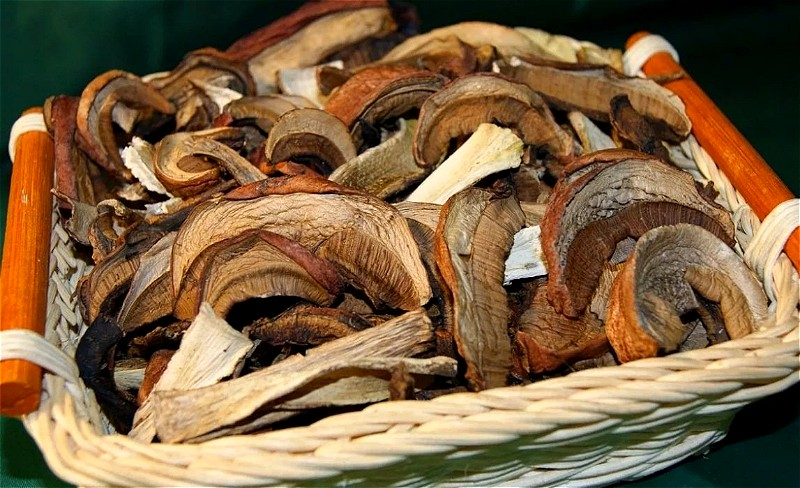 сушеные грибы в домашних условиях