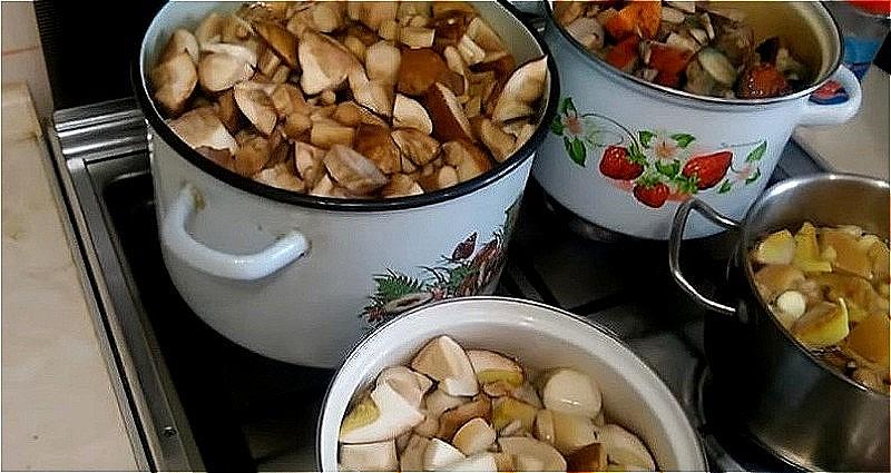 моем, нарезаем и кладем грибы в кастрюлю с водой