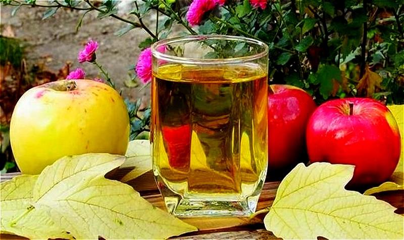 Вино из яблок в домашних условиях - простые рецепты